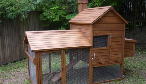 Backyard Chicken Coops Australia 1000 Images About Homes For Chooks On Guinea Pigs Pet Chickens And Australia