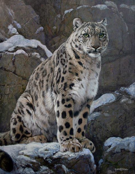 leopard cat painting snow leopard painting by gabriel hermida wildlife