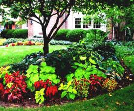 Garden Ideas For Small Areas Small Yard Landscaping Ideas Garden For Areas Diy Home Design Your Shaded Area The Inspirations