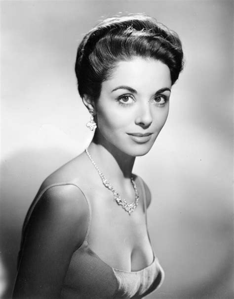born female documentary dana wynter uk german born english beauty whoose most