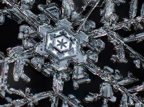 Falling Chandelier Shooting High Resolution Macro Photos Of Snowflakes