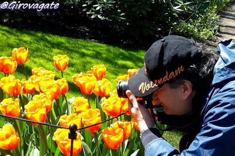 ci di fiori in olanda parco fiori olanda 28 images a keukenhof in bicicletta