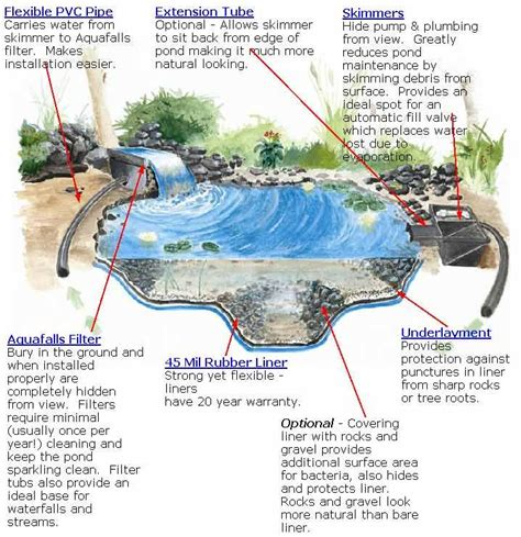 how to build a small pond in your backyard 1000 images about sorry hubby i m building a pond on