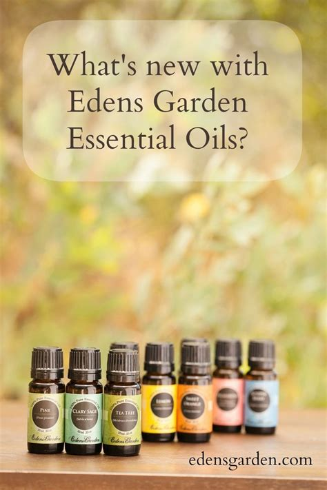 Garden Of Essential Oils 1000 Images About Uses Of Essential Oils On