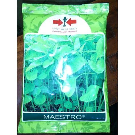 Murah Benih Bayam Hijau Maestro jual benih bayam hijau maestro panah merah