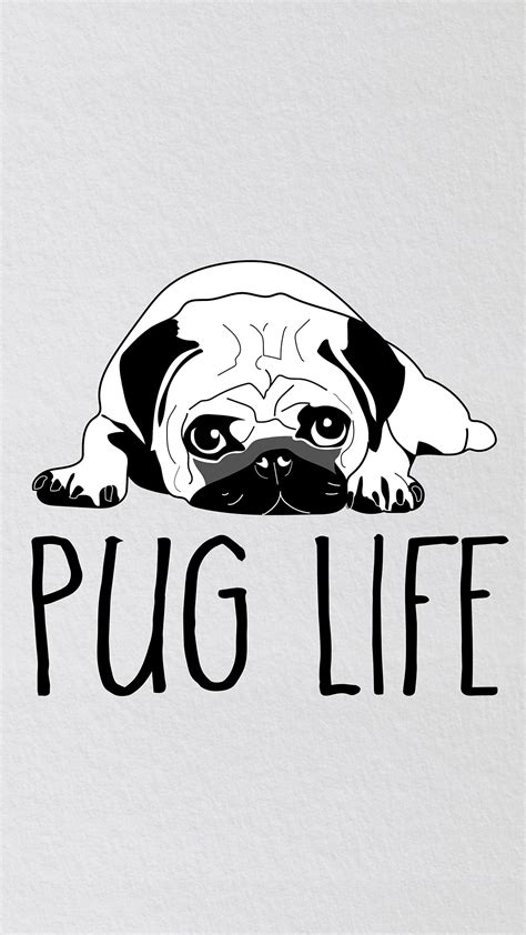pug wallpaper iphone 6 phone wallpaper pug the pug diary