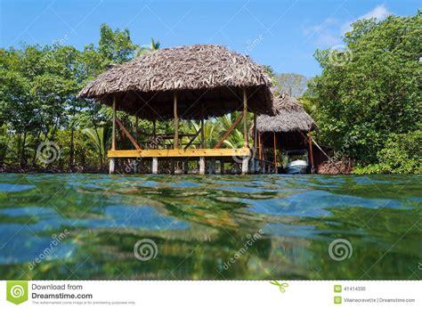 hutte tropicale avec le toit de chaume de la surface de l - Hutte Tropicale