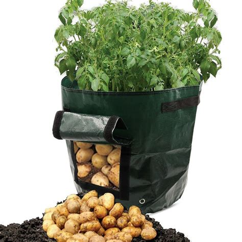 Potato Planter By Planter Bag by Free Shipping 50l Large Capacity Potato Grow Planter Pe