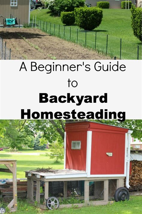 backyard homesteading a beginner s guide to backyard homesteading debt free