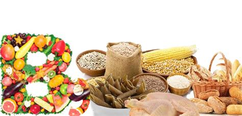 alimenti contengono acido folico e vitamina b12 vivilight 187 vitamina b9 propriet 224 e cibi la contengono