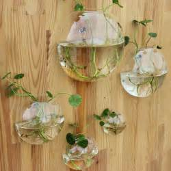 5pcs set wall planter glass vase wall fish tank for home