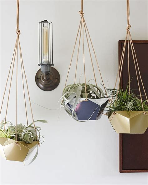 Hang In There Casing Air 218 best for gardening geeks images on home ideas study and flower pots