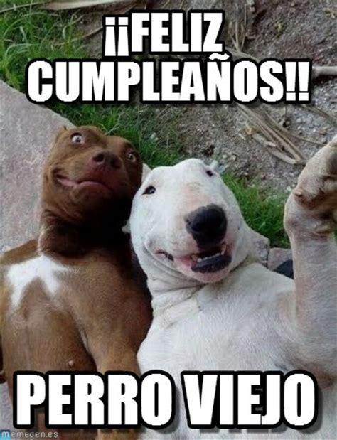 imagenes graciosas para whatsapp de feliz cumpleaños memes graciosos de cumplea 241 os para whatsapp fondos