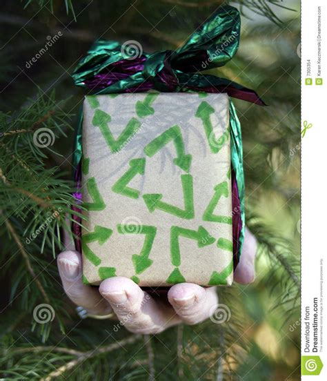 environmental christmas gift stock images image 7305354
