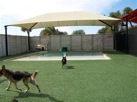 do dogs need grass backyard easyturf installation done at a pet care facility the
