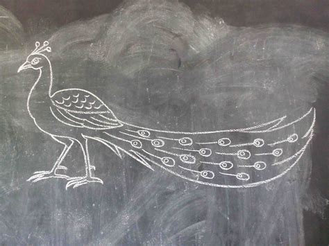 balaj arts drawing class kanchipuram drawing  painting