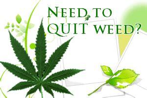 Detox And Quit Marijuana by Top 5 Quit Detox How To Quit