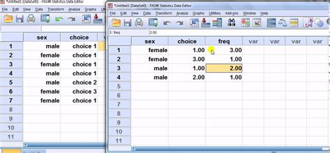 tutorial on spss for beginners spss for beginners weight cases button for grouped data
