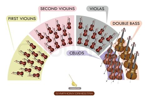 orchestra layout wikipedia illustration collection of different sections of string