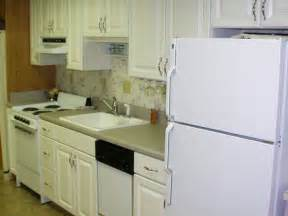 How To Order Kitchen Cabinets How To Buy Small Kitchen Cabinets Modern Kitchens