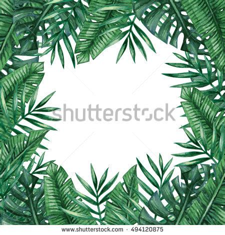 tropical card template palm tree leaves background template tropical stock