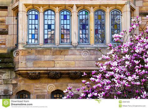 Https Environment Yale Edu Academics Degrees Joint Mba by International Business Yale International Business