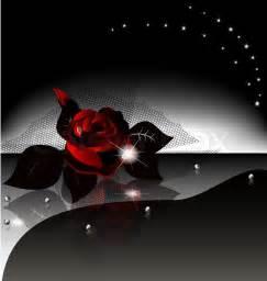 Large Clear Vase Auf Einem Schwarzen Hintergrund Ist Eine Gro 223 E Dunkle Rose