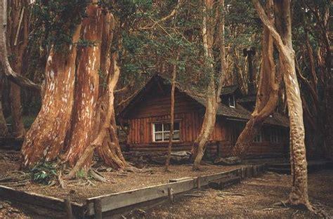 Casitas bosque de arrayanes fotos de san carlos de bariloche