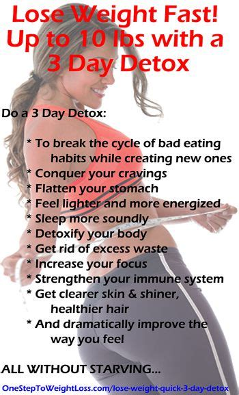 Simple Easy 3 Day Detox To Rid Of Bloat by Best 25 3 Day Cleanse Ideas On Juice Cleanse