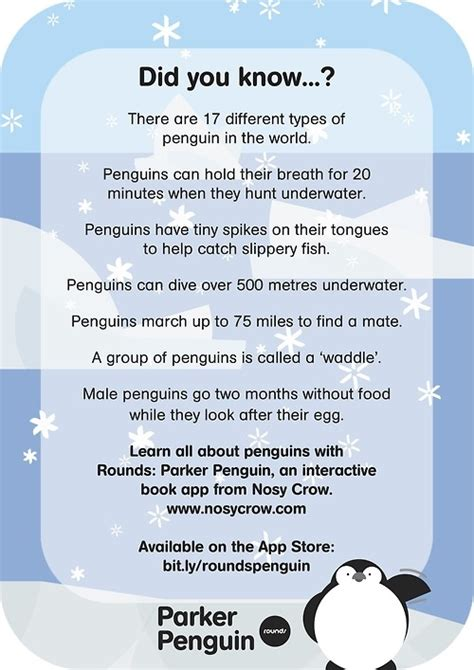 penguin facts for exciting facts about penguins facts about animals volume 18 books best 25 penguin facts ideas on