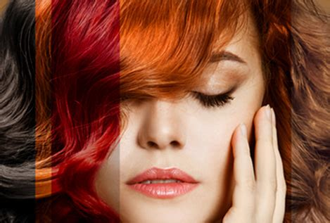 hair coloring hair colouring naturals india s no 1 hair salon