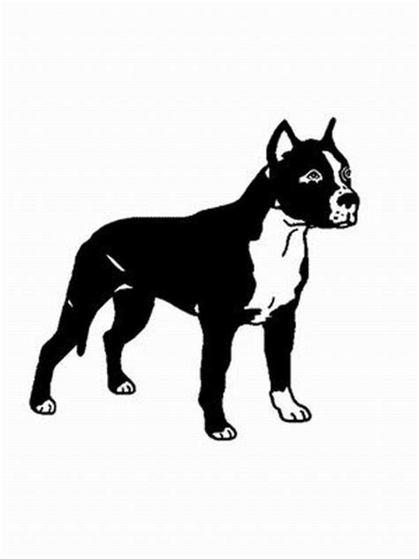 hund pit bull ausmalbild malvorlage hunde
