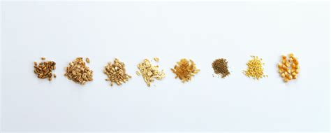 whole grains for weight loss are whole grains for weight loss