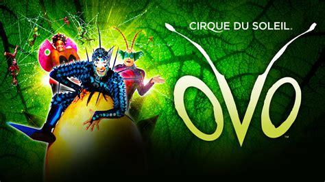 Cirque Du Soleil Gift Card - cirque du soleil ovo royal albert hall royal albert hall