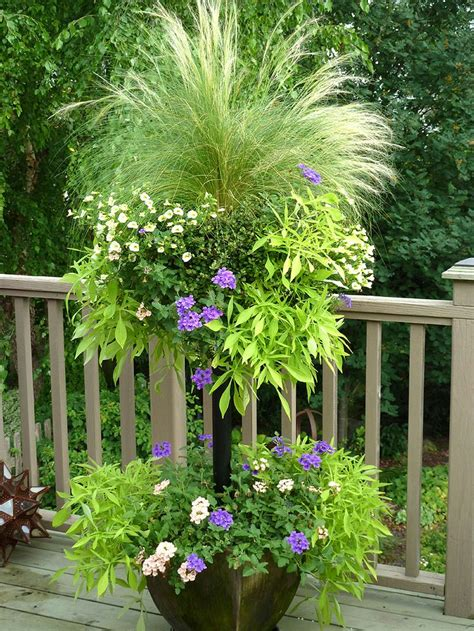 planting gardening ideas 744 best container gardening ideas images on