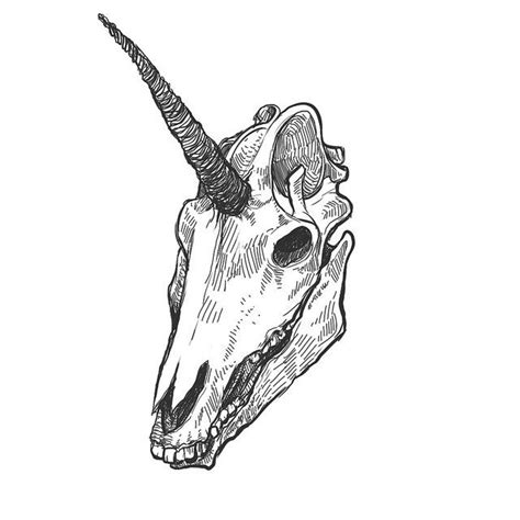 simple black and white unicorn skull tattoo design