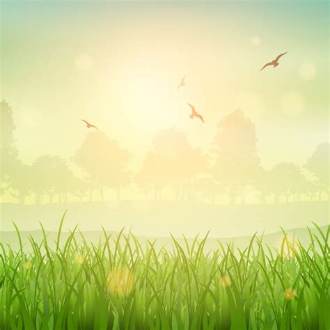 wallpaper alam portrait nature background of a grassy landscape vector free download