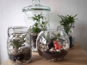 how to make a terrarium a step by step diy tutorial