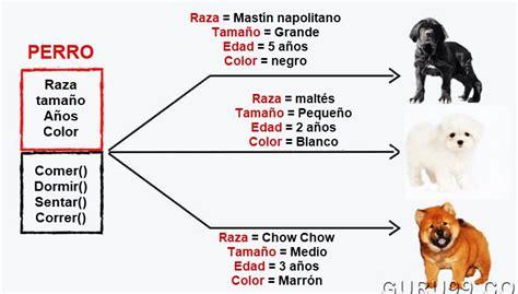 comparacion cadenas java string endswith m 233 todo en java con ejemplo guru99