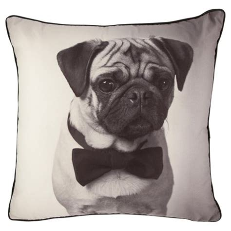 pug cushion buy pug photographic novelty cushion from our cushions range tesco