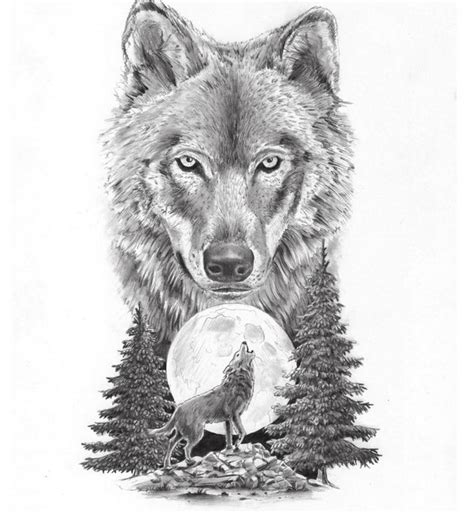 howling meaning wolf howling at the moon breeds picture