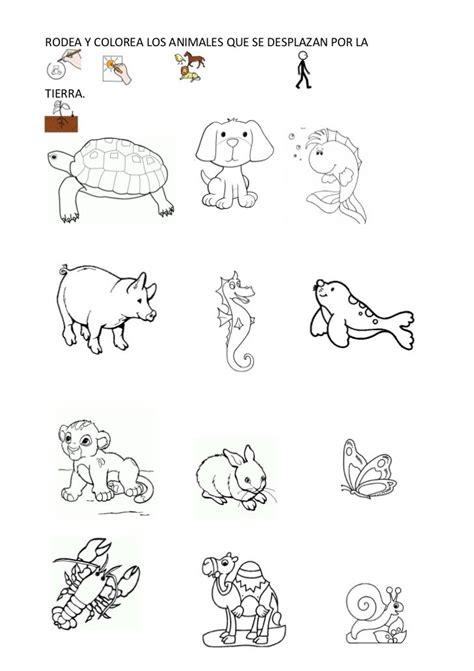 imagenes de animales marinos para colorear imagenes de animales marinos alimentandose para colorear