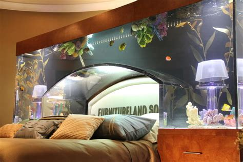 fish tank bedroom furniture fish tank bed frame bedroom ideas pictures