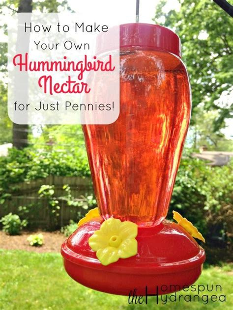feed your hummingbirds for just pennies when you give this