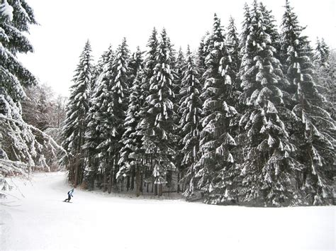 in montagna per capodanno capodanno in montagna 3 destinazioni sulle alpine