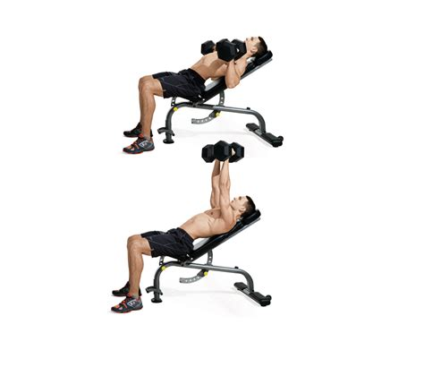 neutral grip incline dumbbell bench press the powerlifting training plan week 1 workout iii men s