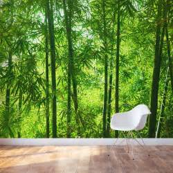 bamboo forest wall mural sunlight forest wall mural