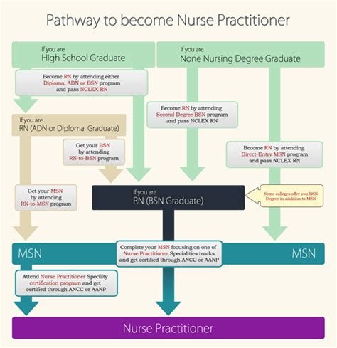 a complete guide to how to become a nurse practitioner