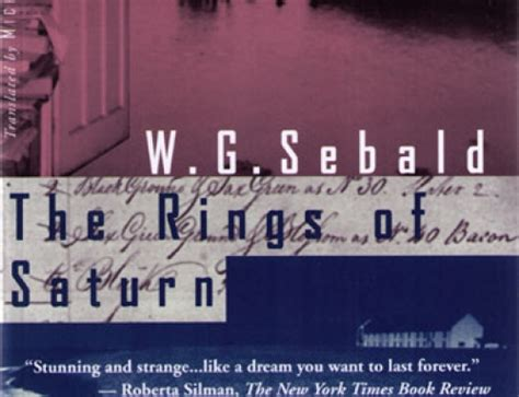 rings of saturn wg sebald w g sebald vertigo the mookse and the gripes