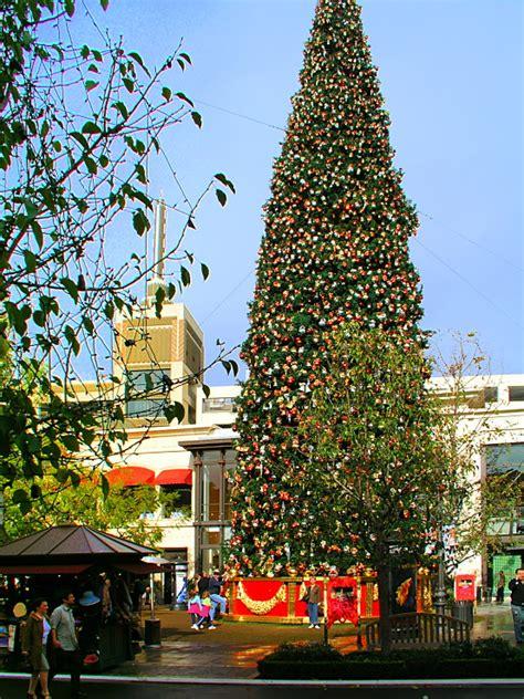christmas tree in los angeles